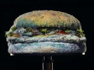 Brave or an ad industry in-joke? Burger King's mouldy Whopper